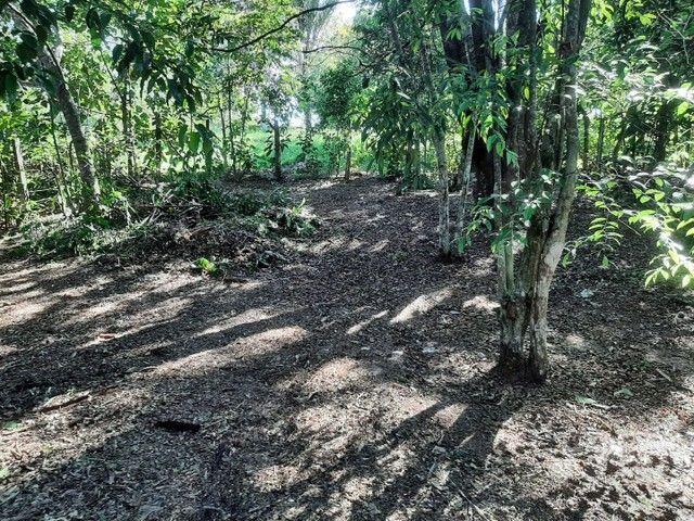 Vendo terreno no Bela Vista ( puraquequara ) - Foto 3