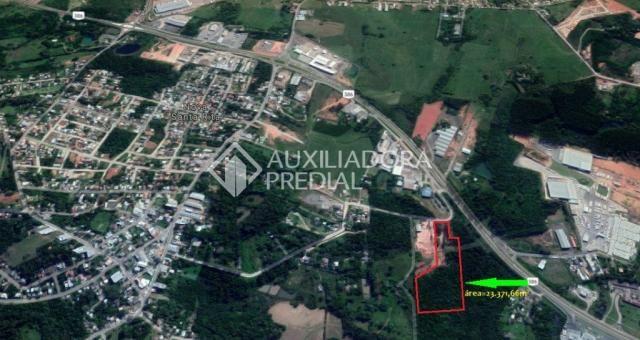 Terreno à venda em Centro, Nova santa rita cod:278732