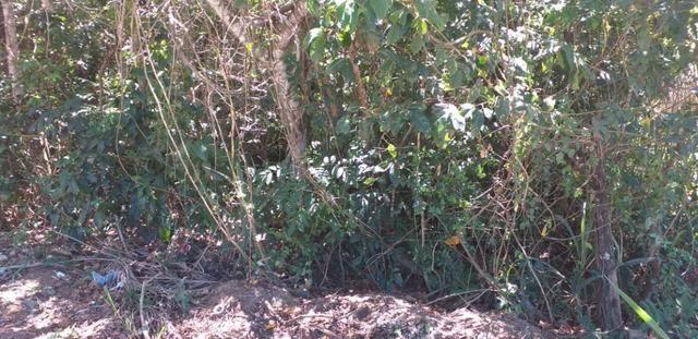 Bon: Cod 2145 Terreno no Leigo - Saquarema - Foto 10