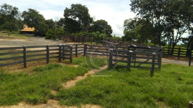 Fazenda 200 hectares na beirada br 070 - Foto 18