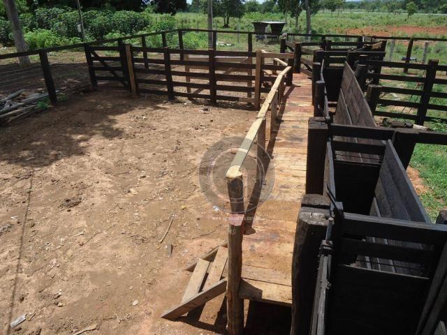 Fazenda 200 hectares na beirada br 070 - Foto 2