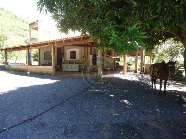 Fazenda 200 hectares na beirada br 070 - Foto 7
