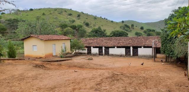Fazenda 12 alqueires em Governador Valadares/MG - Foto 8