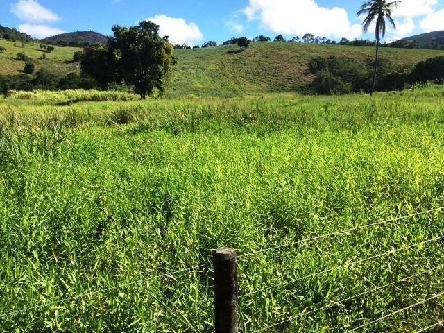 Fazenda 1001 hectares próximo a Teófilo Otoni/MG - Foto 13