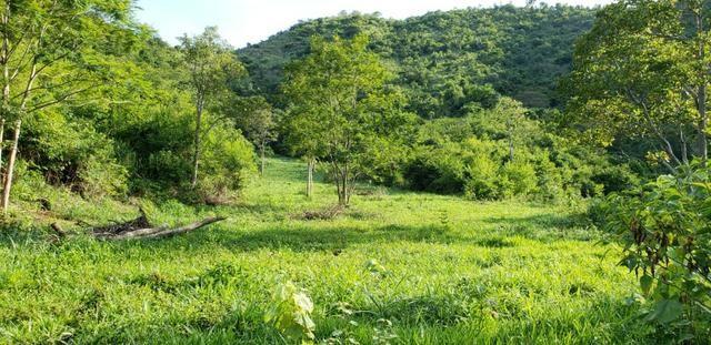 Fazenda 20 alqueires em São Jose Safira / MG - Foto 13