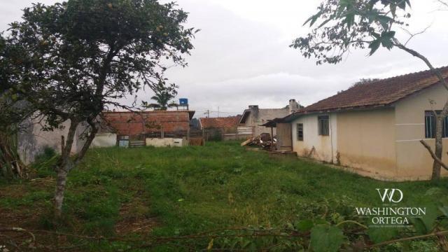 Terreno à venda, 1062 m² por r$ 450.000,00 - borda do campo - são josé dos pinhais/pr - Foto 10