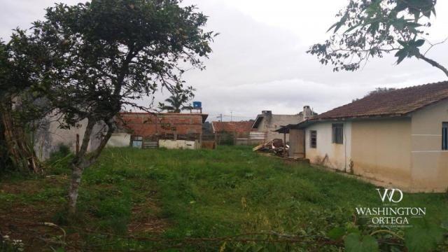Terreno à venda, 1062 m² por r$ 450.000,00 - borda do campo - são josé dos pinhais/pr - Foto 8