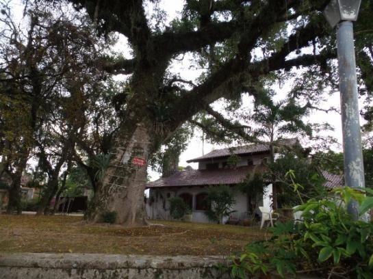 Casa à venda com 3 dormitórios em Ipanema, Porto alegre cod:364000