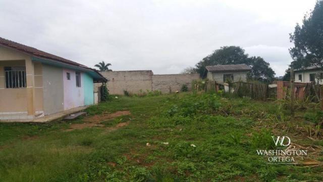 Terreno à venda, 1062 m² por r$ 450.000,00 - borda do campo - são josé dos pinhais/pr - Foto 6