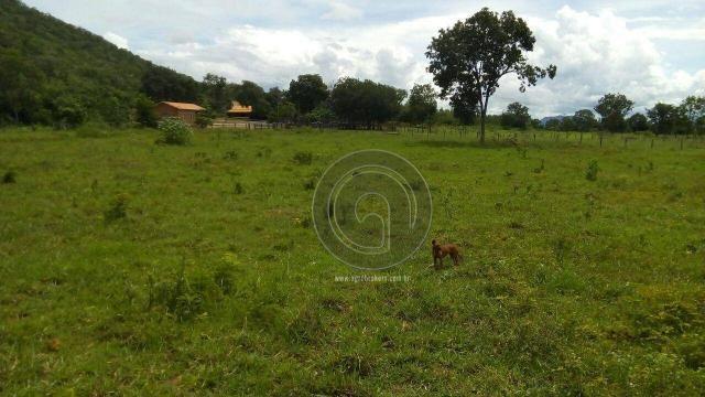 Fazenda 200 hectares na beirada br 070 - Foto 17