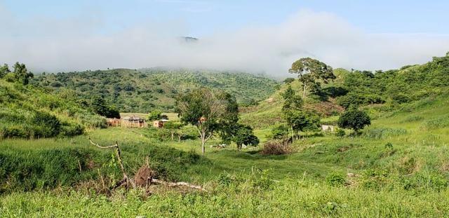Fazenda 20 alqueires em São Jose Safira / MG - Foto 5
