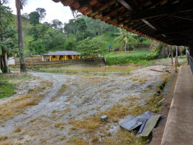 Fazenda para venda em maraial, maraial - Foto 4