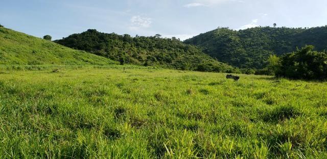Fazenda 20 alqueires em São Jose Safira / MG - Foto 15