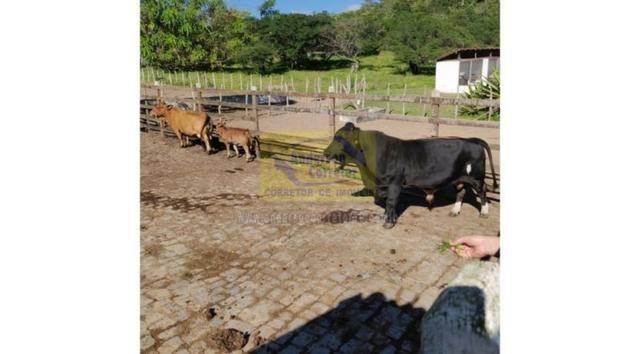 Vendo Lote No Condomínio Fazenda Gramado - Gravatá/PE / Código Do Imóvel : LT0963 - Foto 9