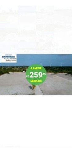 Loteamento Ecolive - tapera Aquiraz  - Foto 5
