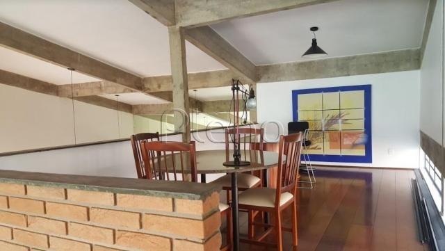 Casa para alugar com 3 dormitórios em Nova campinas, Campinas cod:CA014313 - Foto 7