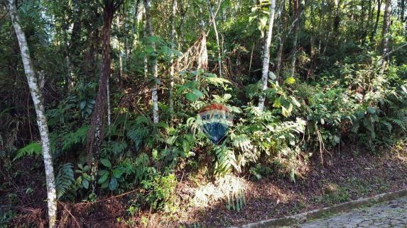 Terreno residencial à venda, Carlos Guinle, Teresópolis - TE0017. - Foto 2