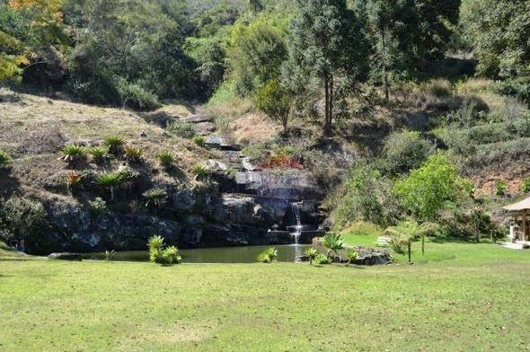 Sítio com 4 dormitórios à venda, 120000 m² por R$ 1.700.000 - Córrego das Pedras - Teresóp - Foto 10