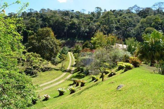 Sítio com 4 dormitórios à venda, 120000 m² por R$ 1.700.000 - Córrego das Pedras - Teresóp - Foto 12