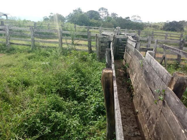 Fazenda de 784,77 hectares ha 140 km de Cuiabá em Rosário Oeste MT - Foto 8