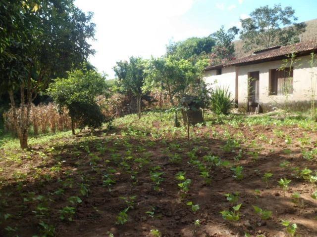 226B/Fazendinha de 15 ha com terras extraordinárias - grande oportunidade - Foto 13