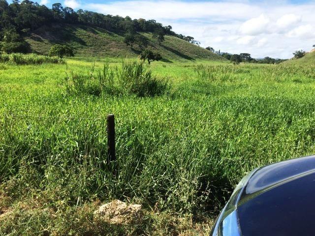 Fazenda 1001 hectares próximo a Teófilo Otoni/MG - Foto 10