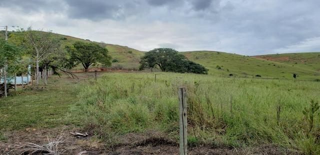 Fazenda 12 alqueires em Governador Valadares/MG - Foto 3