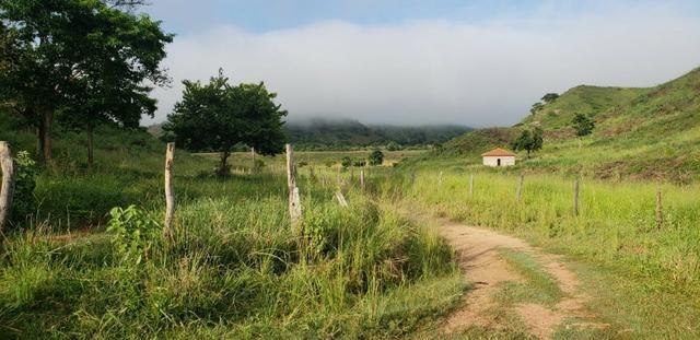 Fazenda 20 alqueires em São Jose Safira / MG - Foto 4