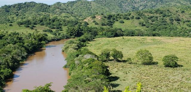 Fazenda 20 alqueires em São Jose Safira / MG - Foto 8