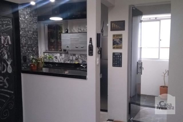 Apartamento à venda com 2 dormitórios em Alto barroca, Belo horizonte cod:257722 - Foto 16