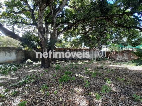 Terreno à venda em Jangurussu, Fortaleza cod:754573 - Foto 17