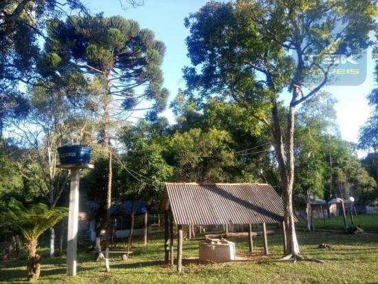 CH0386 - Chácara à venda, 6050 m² por R$ 130.000 - Zona Rural - Quitandinha/PR - Foto 7