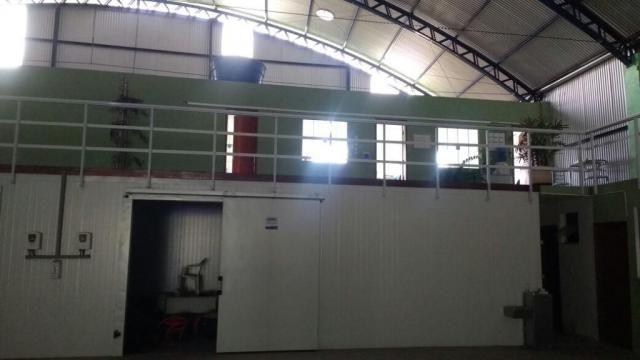 Galpão com 1400 metros quadrados Câmara Frigorífica e Escritório - Foto 13