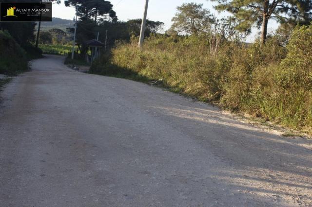 Terreno para Venda em Lagoa Tijucas do Sul-PR - Foto 17
