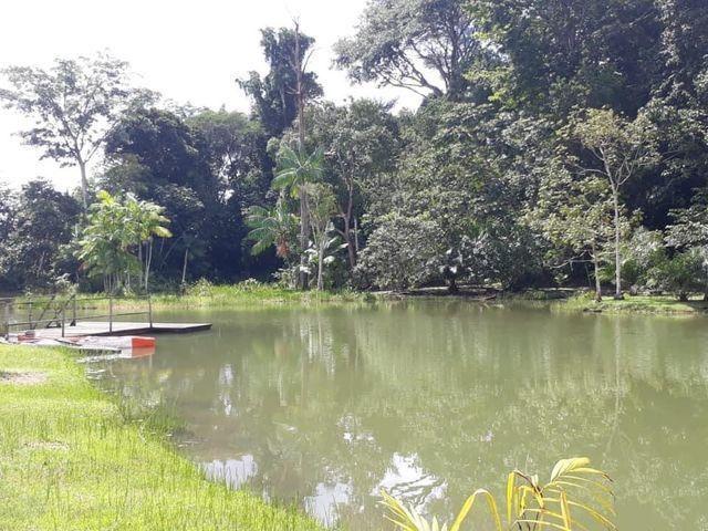 Condomínio Mirante do Lago, apartamento livre, leve e solto! - Foto 12