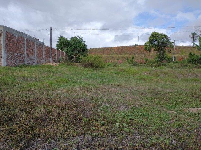 Terreno na Br 408 - Foto 4