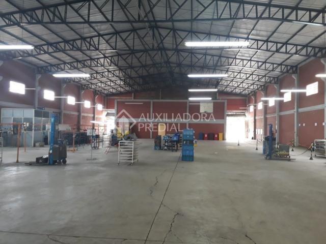 Galpão/depósito/armazém para alugar em Distrito industrial, Cachoeirinha cod:282175 - Foto 7