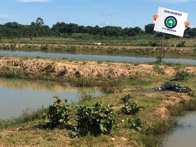 Fazenda com piscicultura ativa, próximo de nossa senhora do livramento - Foto 3