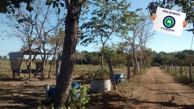 Fazenda com piscicultura ativa, próximo de nossa senhora do livramento - Foto 6