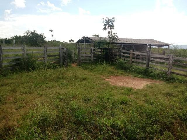 Fazenda de 784,77 hectares ha 140 km de Cuiabá em Rosário Oeste MT - Foto 12