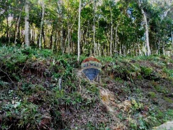 Terreno residencial à venda, Fazenda Boa Fé, Teresópolis. - Foto 15