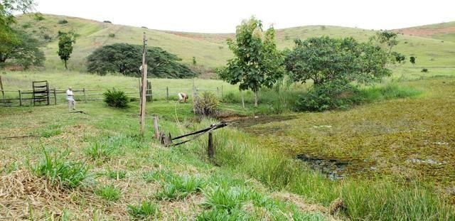 Fazenda 12 alqueires em Governador Valadares/MG - Foto 14
