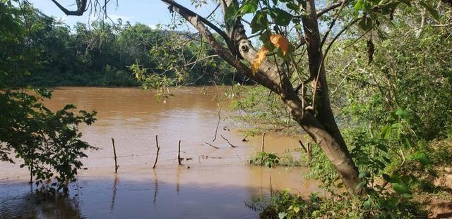Fazenda 20 alqueires em São Jose Safira / MG - Foto 10
