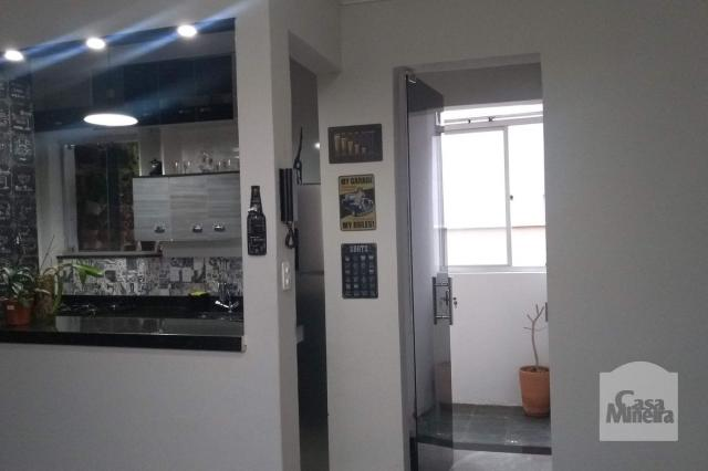 Apartamento à venda com 2 dormitórios em Alto barroca, Belo horizonte cod:257722 - Foto 14