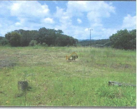 Terreno à venda, 8.100 m² por r$ 315.000 - vila bela - guarapuava/pr - Foto 2