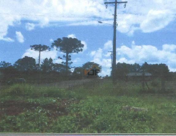 Terreno à venda, 8.100 m² por r$ 315.000 - vila bela - guarapuava/pr