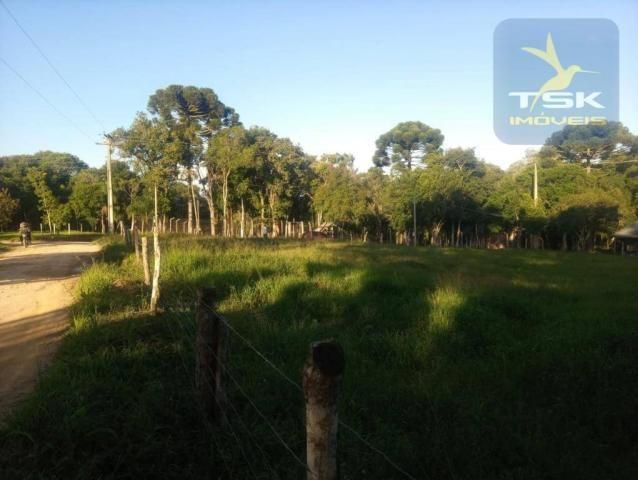 CH0386 - Chácara à venda, 6050 m² por R$ 130.000 - Zona Rural - Quitandinha/PR - Foto 18