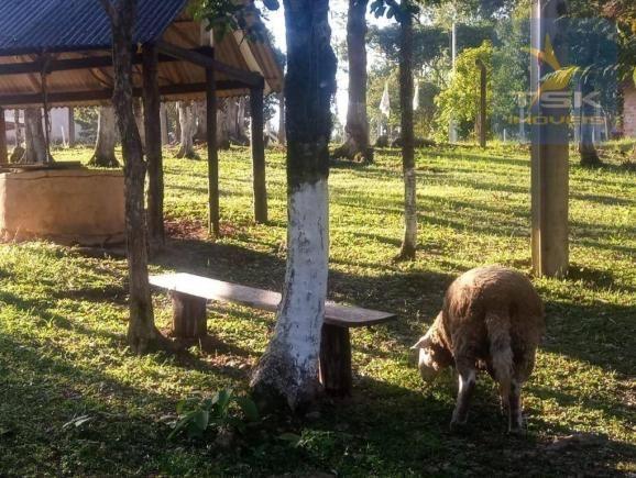 CH0386 - Chácara à venda, 6050 m² por R$ 130.000 - Zona Rural - Quitandinha/PR - Foto 3