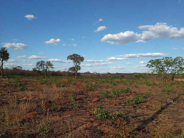 Loteamento Sol do Cerrado  - Foto 5