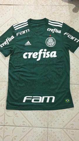 Camisa do Palmeiras Jogador Thiago Santos Autografada - Esportes e ... 673af2f7818b5
